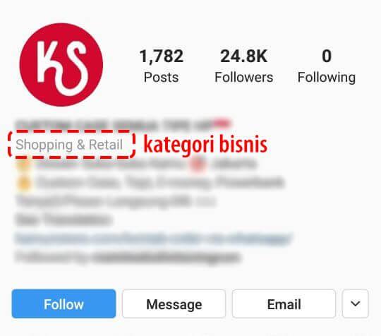 akun profesional instagram adalah